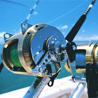 Máy câu cá